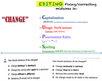 STAAR writing test prep/review