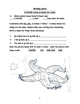 Workbooks for Informational Readers and Writers: STARFISH