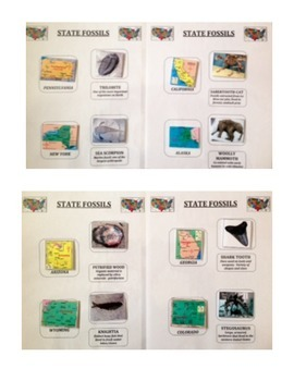 STATE FOSSILS:  Fossil Matching Activity and Terminology