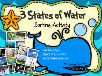 STATES OF WATER Sorting Cards Activity (science matter solid, liquid, gas)