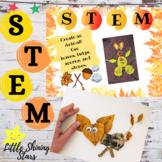 STEAM Bins Activities  / STEM Bin Activities (Fall)