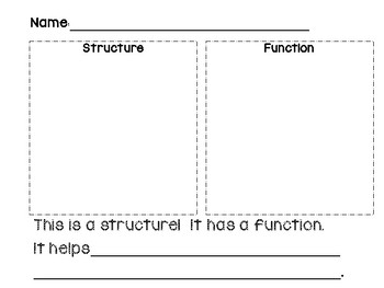 STEAM Class Book: Structure & Function