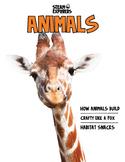 Animals Ebook Unit Study by STEAM Explorers