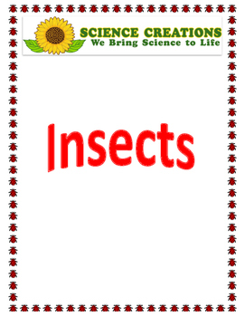 STEAM INSECTS 5 WEEK ACTIVITIES