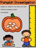 STEAM- Pumpkin Investigation