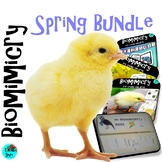Spring Bundle - Animals, Flowers, Lapbook, Banner, STEAM, Biomimicry