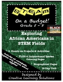 STEAM on a Budget: Exploring African Americans in STEM Fields