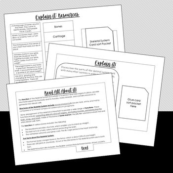 STEM Activity Book- Exploring the Skeletal System