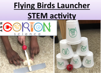Flying Birds Launcher STEM