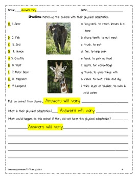 STEM: Animal Adaptations/endangered animals unit! Vocab & Test/Study Guide