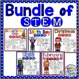 STEM BUNDLE - Winter