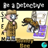 STEAM - Be a Bee Detective - Life Cycle, Biomimicry, Inspiration for Ideas