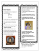 STEM - Be a Bee Detective - Life Cycle, Biomimicry, Inspir