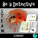 Ladybug, Life Cycle - STEAM, Biomimicry