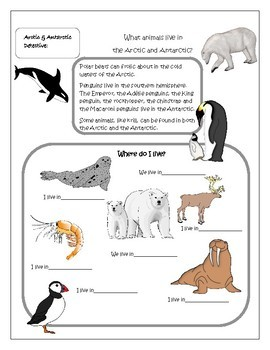 STEM Be an Arctic and Antarctic Detective - Sparkling Fun and Facts