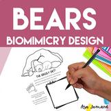 Bears - STEAM, Biomimicry