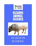 Bizarre Animal Science Lesson Plan: the mystery of the supercow