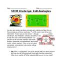 STEM Cell Analogy Challenge