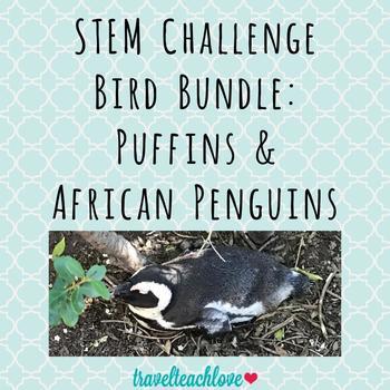 STEM Challenge Bird Home Bundle