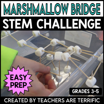 STEM Activity Challenge Bridges with Marshmallows