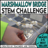 STEM Bridges with Marshmallows Challenge