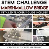 STEM Challenge Bridges with Marshmallows