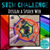 STEM Challenge: Design a Spider Web