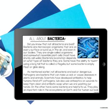 Bacteria STEM Challenge