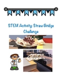 STEM Challenge - Straw Bridge