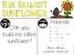 STEM Challenges (September)