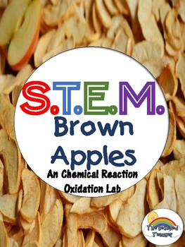 STEM Chemical Change or Chemical Reaction Oxidation Inquiry Lab - NGSS Aligned