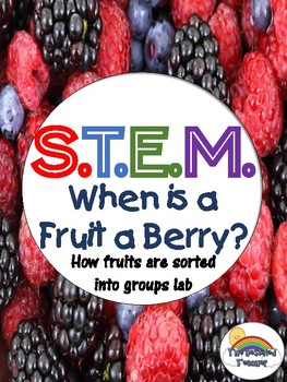 STEM Classification of Fruits Inquiry Lab Activity - NGSS Aligned