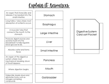 STEM- Digestive System Tabbed Book with 5E Activities!