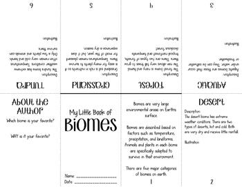 STEM: Ecological Organization Interactive Notebook (INB) Activities