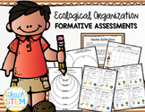 STEM: Ecological Organization Formative Assessments