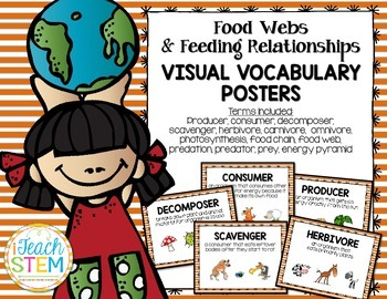 STEM Ecosystem Food Webs & Feeding Relationships Vocabulary Anchor Chart Posters
