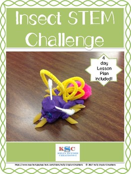 STEM Insect Challenge - Build a Bug!