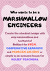 STEM: Marshmallow Engineers - Make your own bridge!