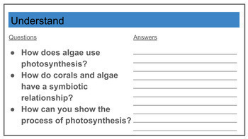 STEM - Photosynthesis, Design Cycle, Scratch
