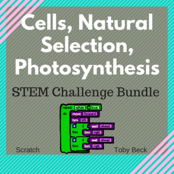 STEM - Science - Design Thinking Bundle