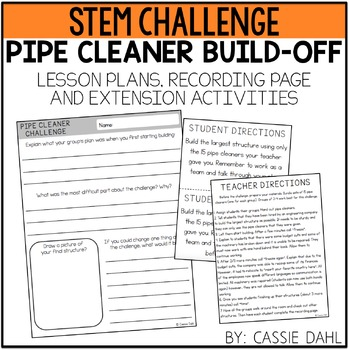 STEM Pipe Cleaner Challenge
