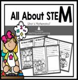 STEM Reader: What is Mathematics?