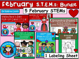 STEM Science, Technology, Engineering & Math February BUNDLE