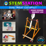 STEM Station Activity: Dog Treat Catapult