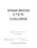STEM Straw Bridge Construction Project