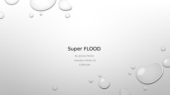 STEM Super Flood