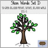 STEM Words Set D