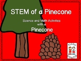 STEM of a Pinecone  - Science and Math with a Pinecone