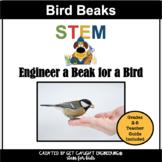 Bird Beaks   STEM Challenge Centers