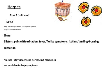 STI  Sexually Transmitted Infections (Diseases)